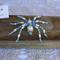 Blue Pearl Beaded Spider  Halloween Christmas Handmade Original by Top Shelf