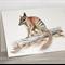 Numbat greeting card Australian wildlife art