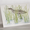 Australasian Bittern  greeting card Australian wildlife art, wetlands, hidden