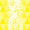 Custom Listing for Megan 3x A4 Geometric Pineapple Prints