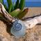 Soft Blue Sea Glass Nautilus Pendant