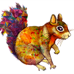 Squirrel - Giclée art print on HAHNEMUHLE photo rag paper