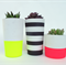 Trio - Concrete Succulent Planter Set - Linear Crush - Urban Decor
