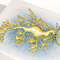 Leafy seadragon greeting card Australian wildlife art, oceans water bubbles
