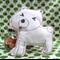 Dot the Dog Softie/Toy