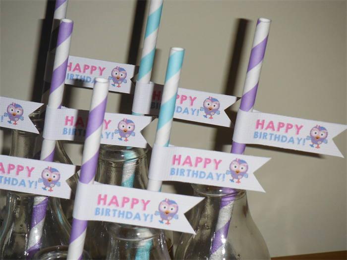 20x Giggle And Hoot Girl S Hootabelle Happy Birthday Party Straws
