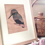 Kingfisher - illustration printed on cherrywood timber