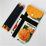 Peggy-Sue Pencil/Glasses Case - Flower seed packets & orange dot stripes