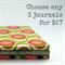 Bulk Buy 3 Journals