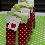 LAST ONE 12 Apple Gift Tags ~ Christmas ~ Ready to Post