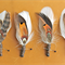 FREE SHIPPING Tiger Tail Feather Buttonholes