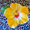 Free Shipping Yellow Hibiscus Hair Clip