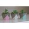 Mini hexagonal concrete planter set of 3