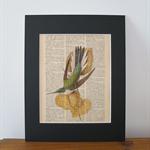 Vintage Book Page Art Print - Hummingbird