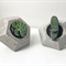 Handmade diamond concrete planter / jewelry stand