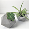 Handmade Icosahedron concrete planter, modern geometric