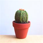 Crochet Cactus - Ferocactus