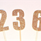 Number Cake Pokes - Cake Toppers. Gold or Silver Glitter. Birthday - Anniversary