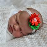 Christmas Headband, Red & Green Flower, Newborn