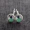Blue Wrens~ Lever Back Earrings