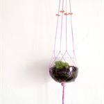Pastel Pot Plant Hanger - Single 6 Bead Design