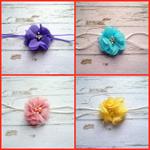 4 pack Bella flowers