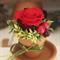 "Preserved Flower Arrangement "" Terracotta Pot petit"" Red Gradation"