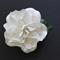 Gardenia Hair Clip