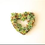 Succulent Heart Centerpiece, Valentine's Centerpiece