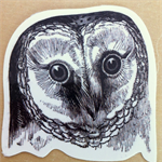 Vintage Art Owl Large Vinyl Sticker