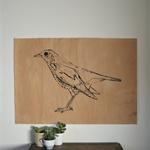 'Birdy'