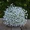 Silk wedding bouquet in white - Madeline