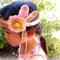 Little Pink Gypsy - pure wool felt headband, bohemian, feather, Perth