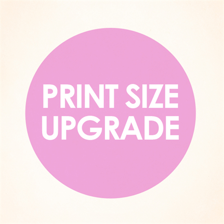 Your choice of 3 x A3 prints