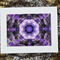 Kaleidoscope 'Agapanthus'