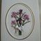 Purple Irises Card with Ribbon Bow - Completed Cross Stitch