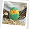 Easter Chick Felt Catnip Toy (Green)