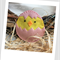 Easter Chick Felt Catnip Toy (Pink)