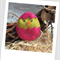 Easter Chick Felt Catnip Toy (Hot Pink)