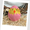 Easter Chick Catnip Toy (Pink)
