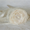 Flower girl wand, flower wand, satin and lace ribbons, junior bridesmaid