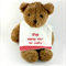 Allergy Alert Bib - No Dairy Cotton Fabric, Bamboo Toweling, Snap fastened