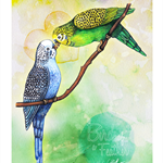 Birds of a Feather / Budgies - A4 Giclée art print on HAHNEMUHLE photo rag paper
