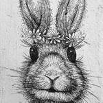 bunny rabbit original etching