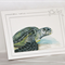 Hawksbill Turtle greeting card Australian wildlife art, sea green grey blue