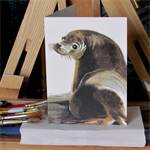 Australian Sea Lion greeting card Australian wildlife art, painted portrait seal