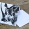 "Blank Greeting Card Rhinoceros ""Rhino Love"" Art by April Spadina"