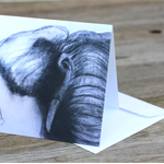 Blank Greeting Card elephant 
