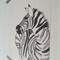 zebra A4