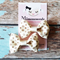 Pair of Cream Ivory Bow Hair Clips
